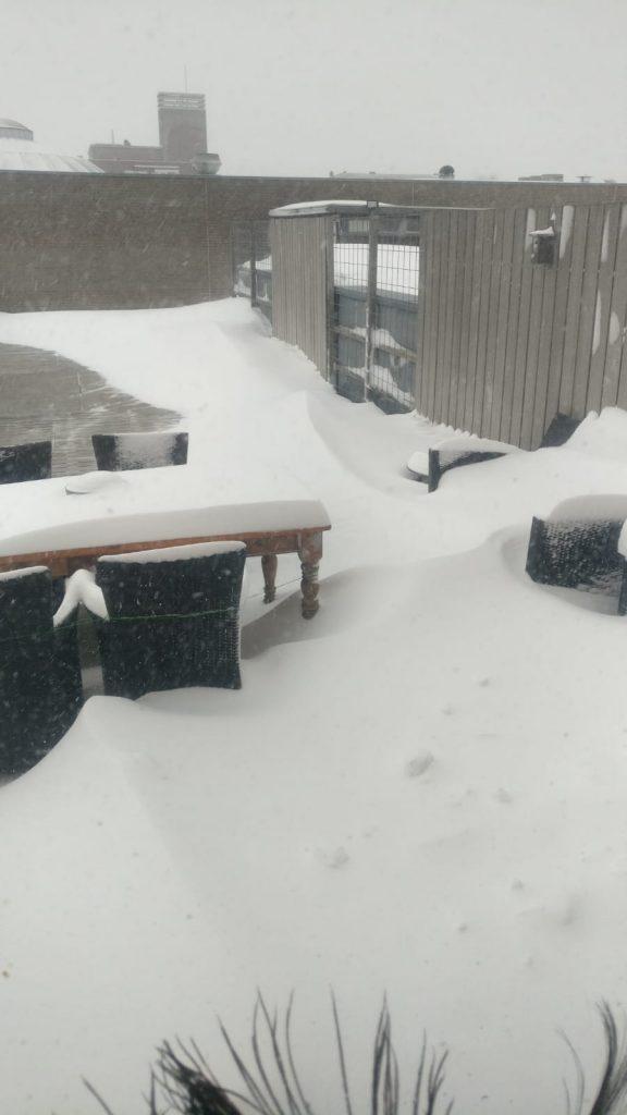 sneeuw nijmegen